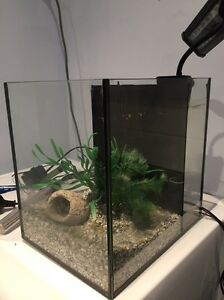 Fish tank and accessories Inglewood Stirling Area Preview