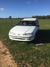 1996 xh falcon ute Maryborough Central Goldfields Preview