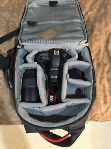 Canon 60D Camera/ lenses + Bag Taree Greater Taree Area Preview