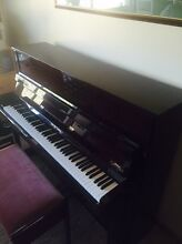 Young Chang upright piano Cobbitty Camden Area Preview