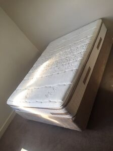 URGENT SALE Moving oversea sale - Sealy firm queen size Matress + base Wolli Creek Rockdale Area Preview