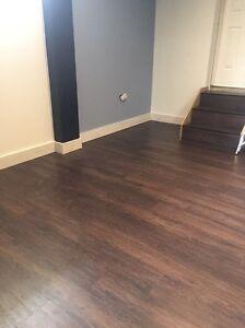 Handyman & Carpentry Services Emu Plains Penrith Area Preview