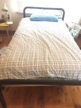 Queen single bed Denistone West Ryde Area Preview