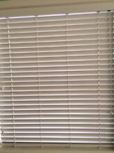 White timber look blinds Little Bay Eastern Suburbs Preview
