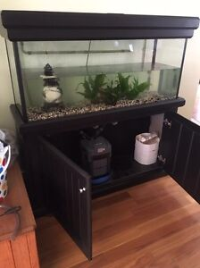 Fish tank with pump Erskine Park Penrith Area Preview