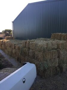 Oaten Hay small squares Mypolonga Murray Bridge Area Preview