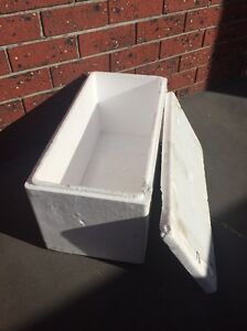 Polystyrene foam boxes with lids Fulham Gardens Charles Sturt Area Preview