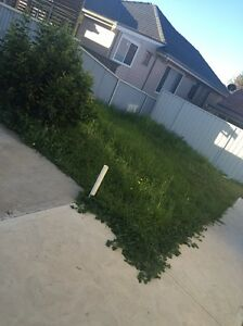 Need someone to mow the grass for me Cardiff Heights Lake Macquarie Area Preview