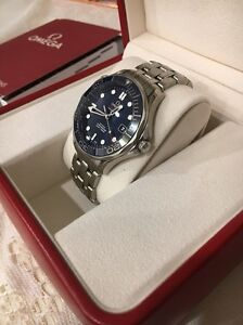 Omega Seamaster Diver 300M Willetton Canning Area Preview