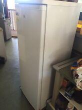 Upright freezer Maroochydore Maroochydore Area Preview