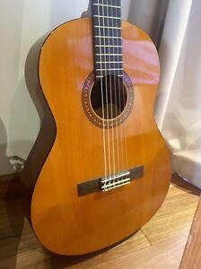 Amazing beginner guitar Byron Bay Byron Area Preview