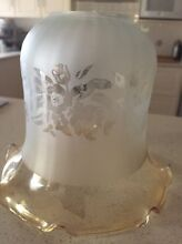 Etched glass light shades Angle Vale Playford Area Preview
