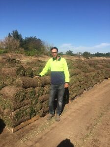 BIG SALE($10)just Remove old grass and put new buffalo Turf sq2 Blacktown Blacktown Area Preview
