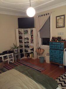 Spacious room for rent,north bondi Bondi Beach Eastern Suburbs Preview