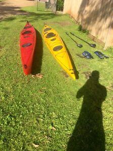 Kayak Seabird expedition McCrae Mornington Peninsula Preview