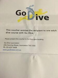 Scuba Dive course with Go Dive West Launceston Launceston Area Preview