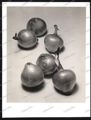 Foto-Gertrude Fehr-Schweiz-Zwiebeln-Gemüse-Produkt-Kunst-Werbe-Fotografie-19