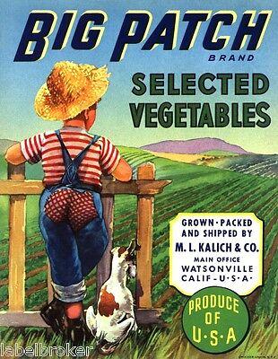 CRATE LABEL VINTAGE DOG BIG PATCH WATSONVILLE OVERALLS GENUINE LABEL 1950S