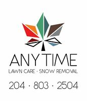 Anytime Lawn Care - Fall clean up