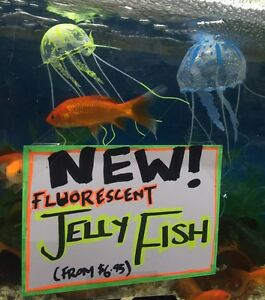 Fluorescent floating jelly fish ornaments Boronia Knox Area Preview