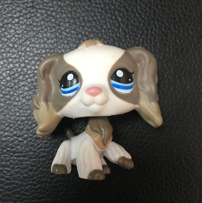 Littlest Pet Shop Cocker Spaniel Dog White Grey Blue Eyes Lps 2254