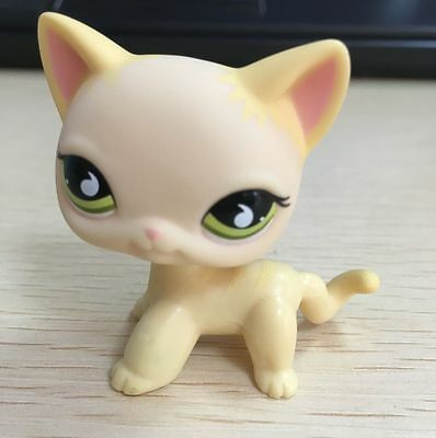 LPS #733 Littlest pet SHOP creme shorthair cat green teardrop eyes
