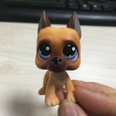 Action Figure Great Dane Dog Brown Purple Eyes  Lps  244 Littlest Pet Shop