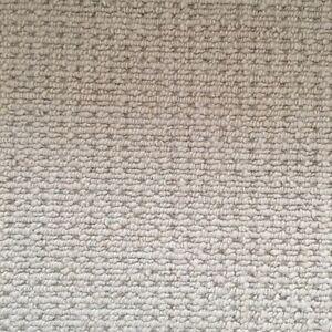 Brand New Carpet Meridan Plains Caloundra Area Preview