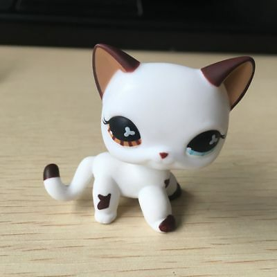 OOAK LPS brown/ blue eyes white cat Hand Painted LITTLEST PET SHOP Blue Eyed White Cats
