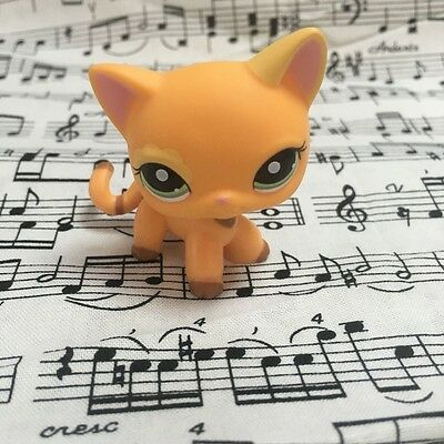 Littlest Pet Shop  1643 Flower Eyes Orange Cat Lps Lovely Gift Action Figure
