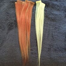 Tape hair extensions Aberglasslyn Maitland Area Preview