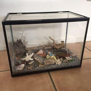 Fish/hermit crab tank Clayfield Brisbane North East Preview