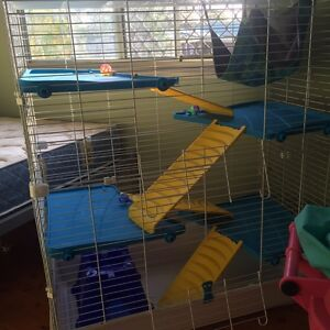 Rat cage large Mango Hill Pine Rivers Area Preview