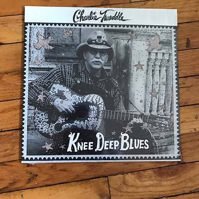 """Charlie Tweddle - Knee Deep Blues LP country folk outsider psychedelic psych 12"""""""