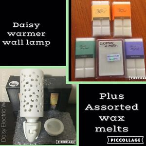 Electric Warmer Wax Lamp plus Wax Melts Northam Northam Area Preview