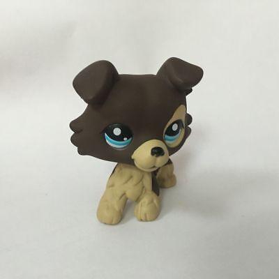 Custom Ooak Lps Brown Collie Blue Eyes Hand Painted Littlest Pet Shop