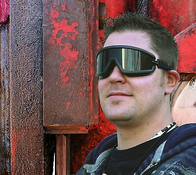 Radians Barricade Smokegray Anti Fog Safety Goggles Glasses