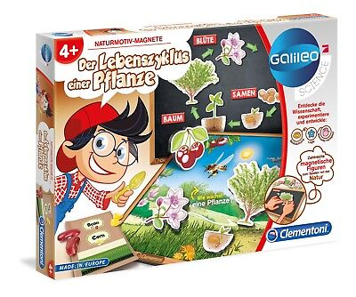 Clementoni 59067 Galileo Der Lebenszyklus einer Pflanze (Lebenszyklus Der Pflanzen)