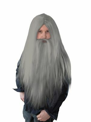 Mens Long Hair Halloween Costumes (Mens Long Grey Wizard Beard & Hair Wig Fancy Dress Halloween)