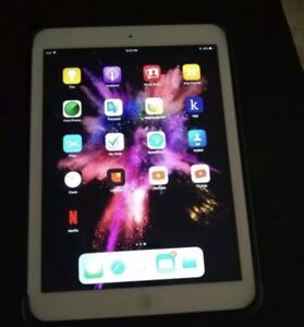 iPad Air 16GB with case