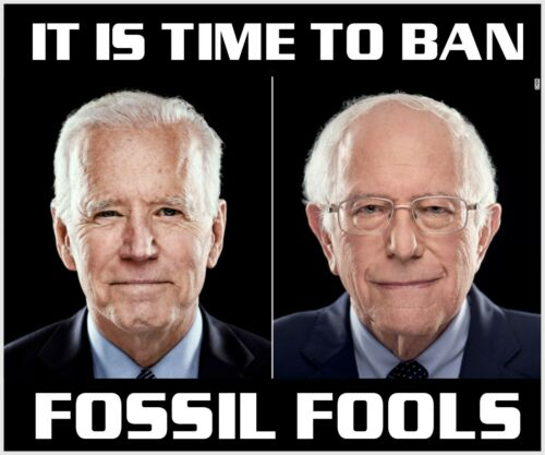 """Joe Biden Bernie Sanders Bumper Sticker Time to ban Fossil Fools 5"""" x 6"""" Decal"""