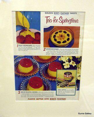 Original Vintage Advertisement mounted ready to frame Birds Custard 1950's