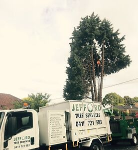 Jefford Tree Services                         Over 20⭐️⭐️⭐⭐️️⭐️Reviews Heidelberg West Banyule Area Preview