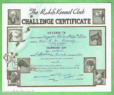 #T41. #11. 1957  RAS KENNEL CLUB DOG CHALLENGE CERTIFICATE, CHIHUAHUA