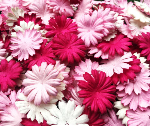 50+Petals+Daisy+Flower+Mixed+Pink+Tone+White+Mulberry+Paper+Craft+Wedding+Card+