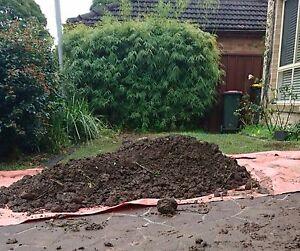 Free soil Beverly Hills Hurstville Area Preview
