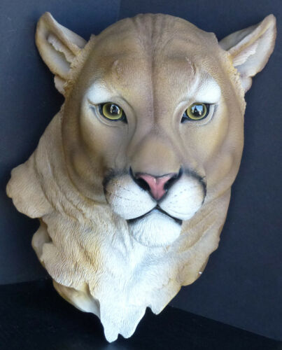CATAMOUNT  Mountain Lion Head Statue Figurine DWK H16