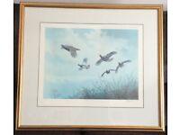 Cragside Northumberland Limited Print By Sarah Jane Holt