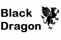The Dragons Lair