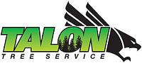 SNOW REMOVAL- Talon Tree Service